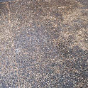 Paardenstalegel met stro in gebruik