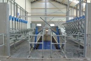 Koeien melkruimte voorzien van rubber
