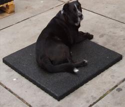 vochtdoorlatende hondentegel