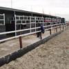 zandkering managebak